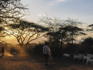 Pastoralist Sunset in Isiolo District
