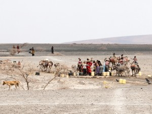 Rendille Women at a Watering Hole in Kargi