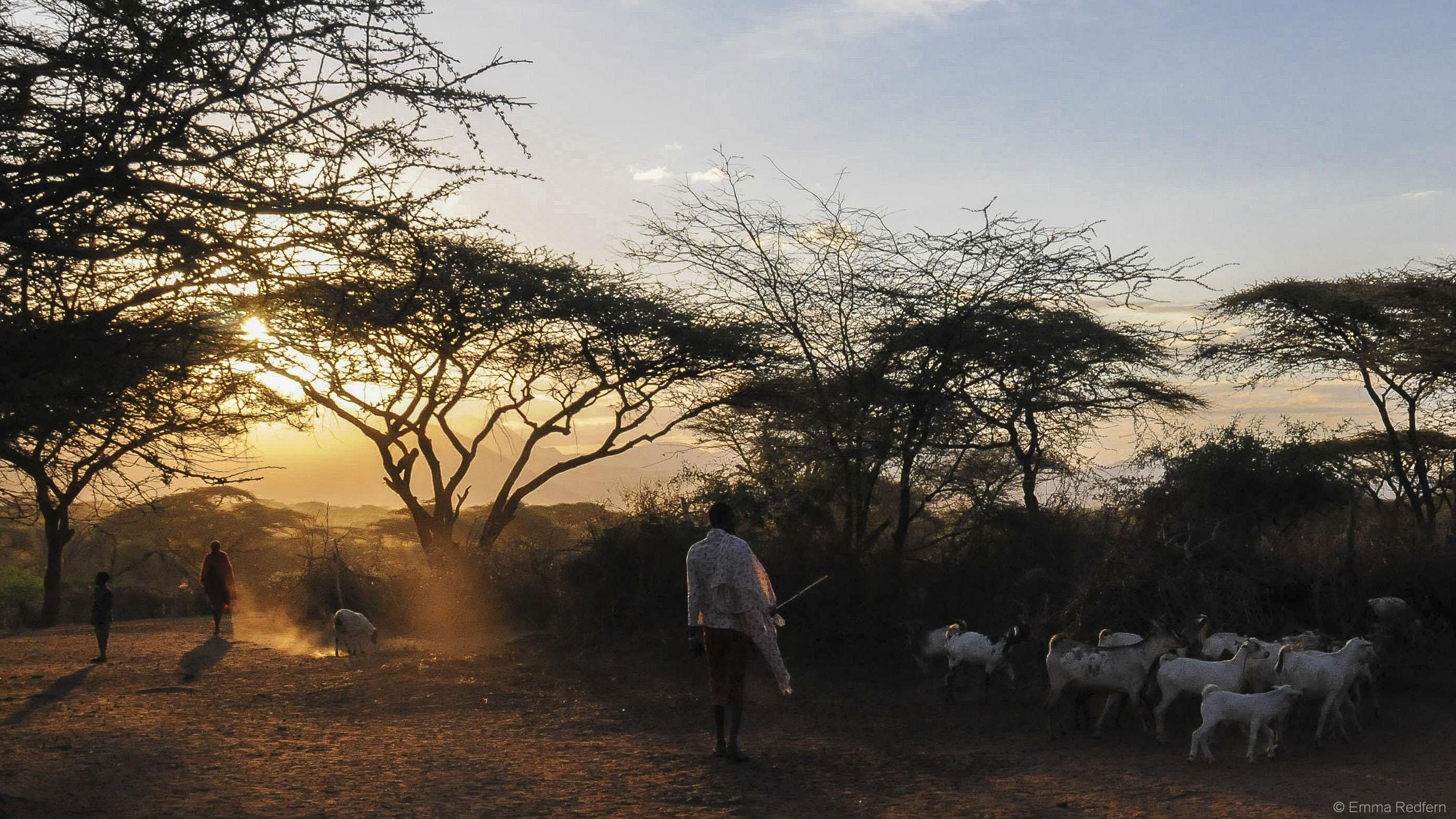 Pastoralist Sunset