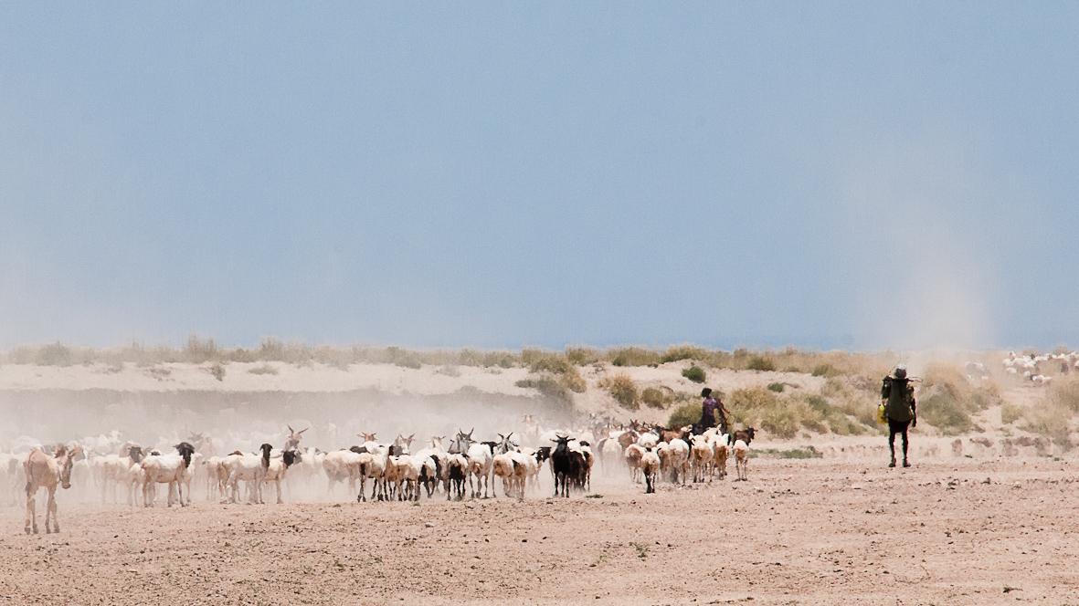Herders in northern Turkana