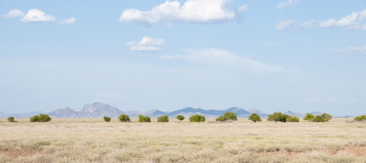Turkana North District