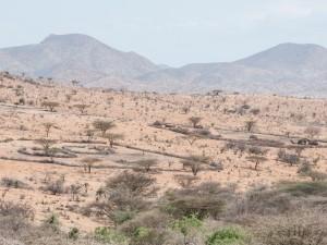 Samburu Manyattas