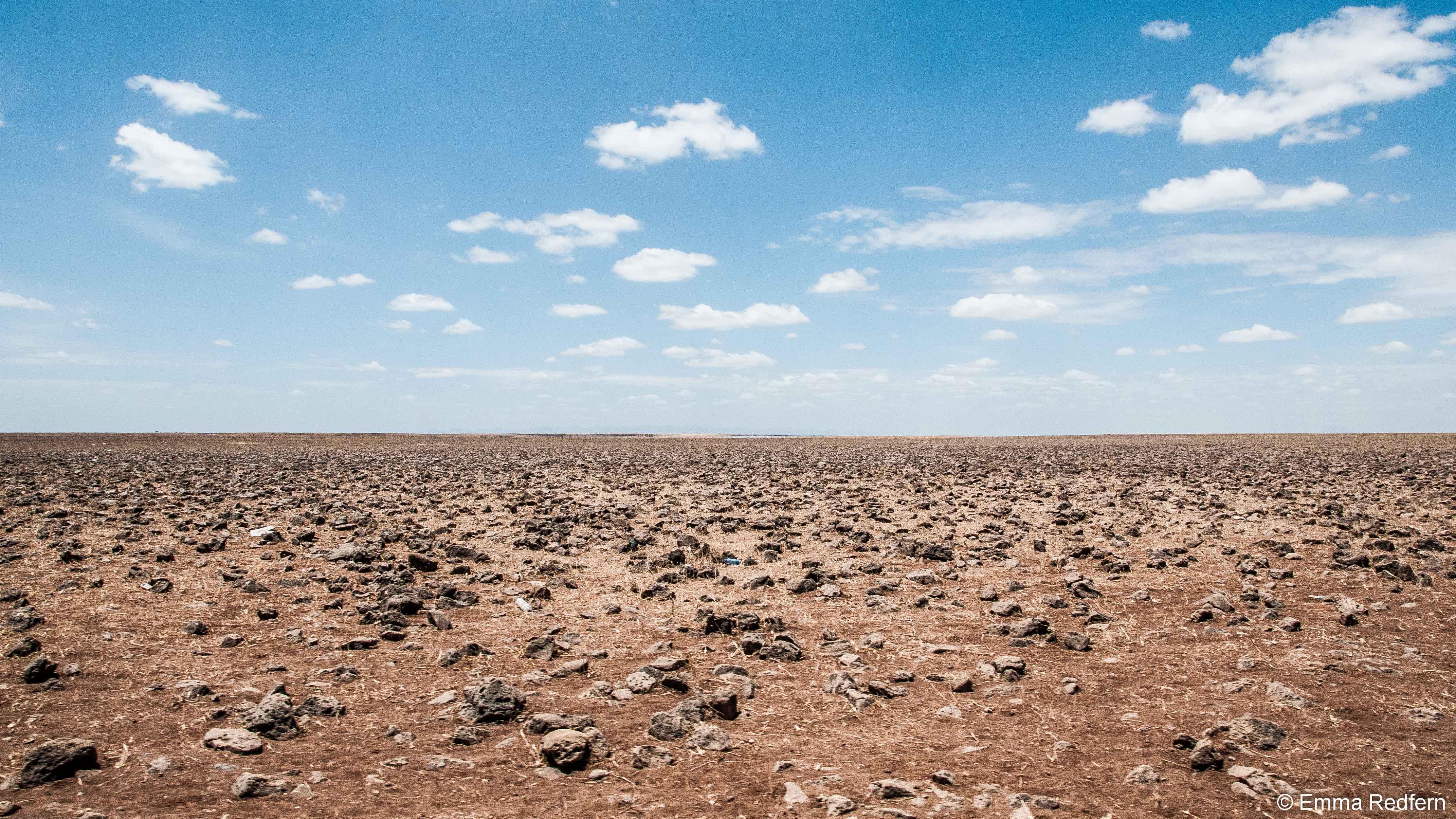 Dida Galgalu Plains