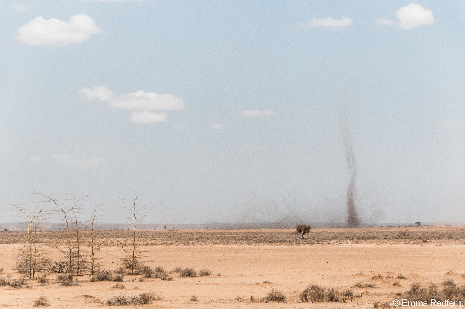 Dust devil just after Laisamis
