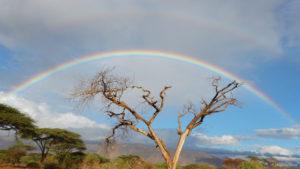 Rainbow over Olng'arua School