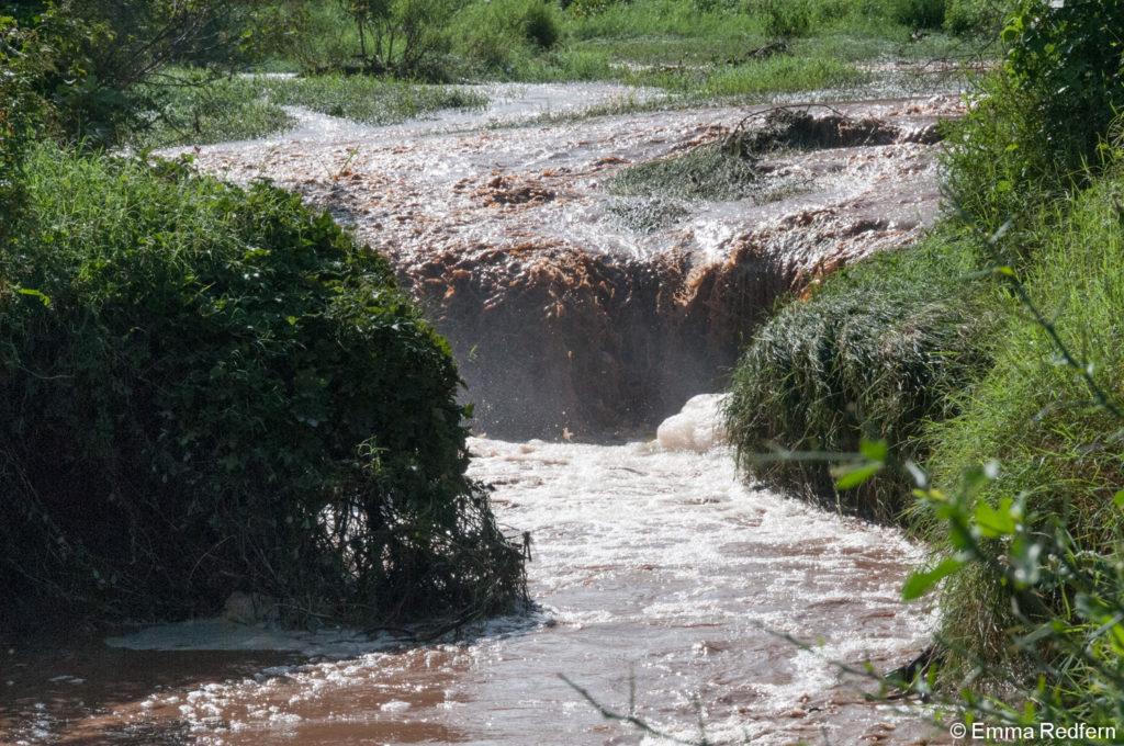 A new river - Isiolo County